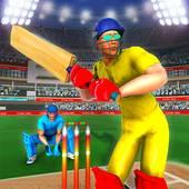 IPL Cricket Game APK 2020